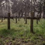 cemetery insane
